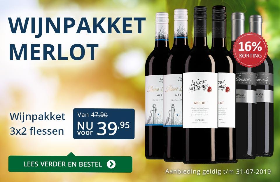 Wijnpakket Merlot (3x2 flessen) - blauw